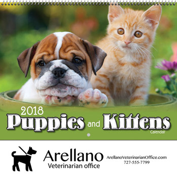 2018 Puppies & Kittens Wall Calendar - Spiral